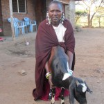 naponu and goat 2